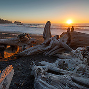 Watching the sunset on Rialto Beach, Olympic National Park, on an unusually warm October 3rd. Giant driftwood logs—entire trees—litter the beach, washed up by surf that can reach 20-plus feet in winter.