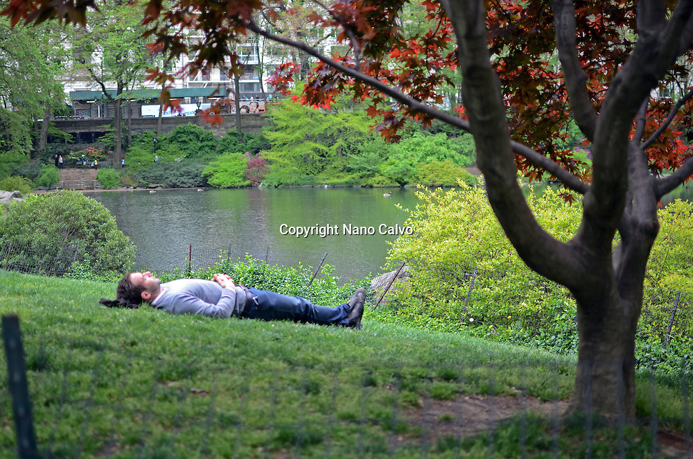 Young man sleeps in Central Park