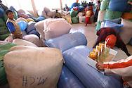 Inside the Villa Fatima market. job, work, agricolture