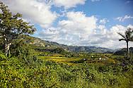 Farms, El Moncada, Pinar del Rio, Cuba.