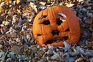 .Fall in Wisconsin.