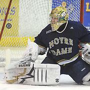 LSSU vs. Notre Dame - 1/22 & 1/23/10