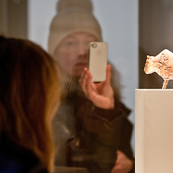 A visitor takes a picture with his iphone to a figurine of a bison made of mammoth ivory during the press preview of the 'Ice Age Art - Arrival of the modern mind' exhibition at The British Museum in London. The exhibition, curated by Jill Cook, opens in London on the 7th of February and presents masterpieces of Ice Age sculpture, ceramics, drawing and personal ornaments, created over 20,000 years ago.