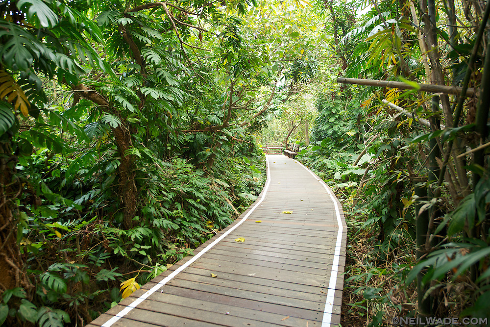 Liuqiu Taiwan  City pictures : cliffs island kaohsiung little liuqiu taiwan trail wild boar trench ...