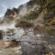 Hot Stream flows past the steaming hillside of the Cathedral Rocks in the Waimangu Volcanic Rift Valley near Rotorua, New Zealand. Waimangu is a hydrothermal system created by the 1886 volcanic eruption of Mount Tarawera. Waimangu means 'black water' in Māori, the indigenous language of New Zealand, a name given to the area because water in its largest geyser often contains mud and rocks.