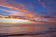 Seagulls Cottesloe