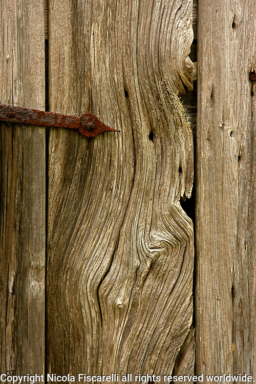 An old rusty hinge on the weathered wooden door.