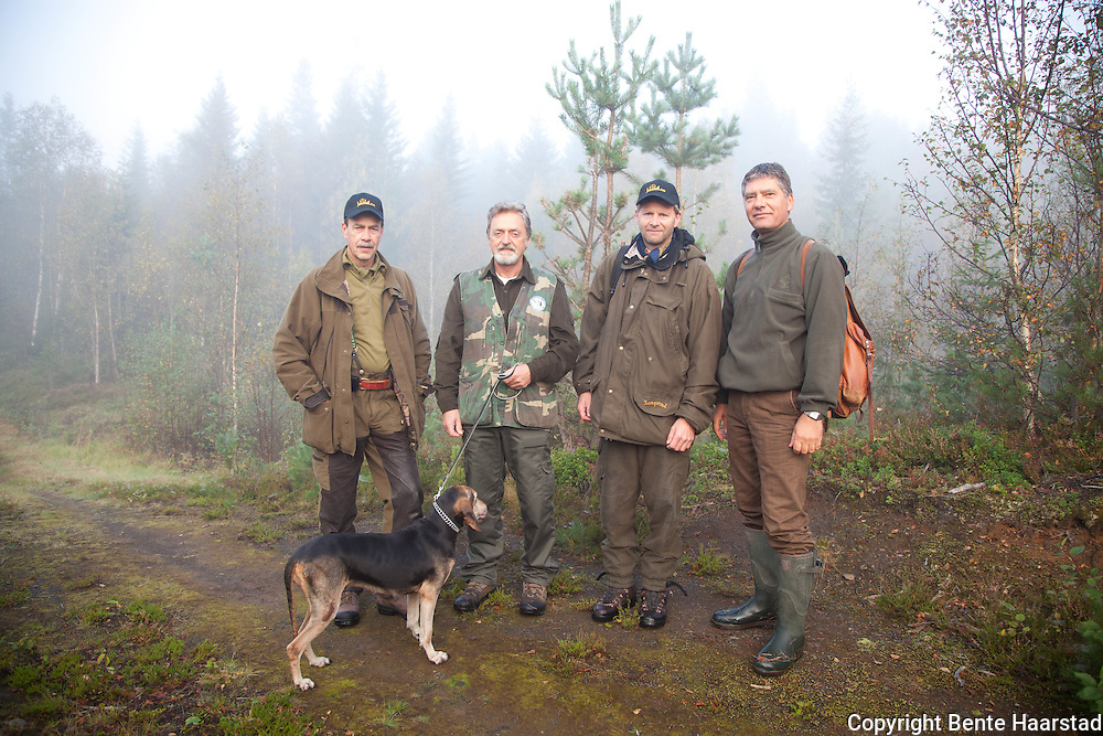 Europa-cup for hare hunting dogs, Norway 2011.