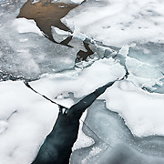 Sea ice breaks apart and melts inthe Arctic Ocean during its all-time lowest extent in September, 2012.