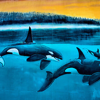 Orcas Passage Mural by Wyland in Indianapolis, Indiana<br /> Wyland and his foundation spent 27 years completing the global project of 100, life-size wall murals of marine animals and aquatic life. Number 74 is called &ldquo;Orcas Passage.&rdquo; The painting is on the Indianapolis Public Schools building in Indianapolis, Indiana. This is a detail of the 153 foot by 35 foot mural.