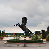 Roma - 07 Novembre 2010.Derby equitazione all' Ippodromo di Capannelle.La statua che ritrae un cavallo imbizzarrito simbolo dell'ippodromo.foto:Stefano Meluni
