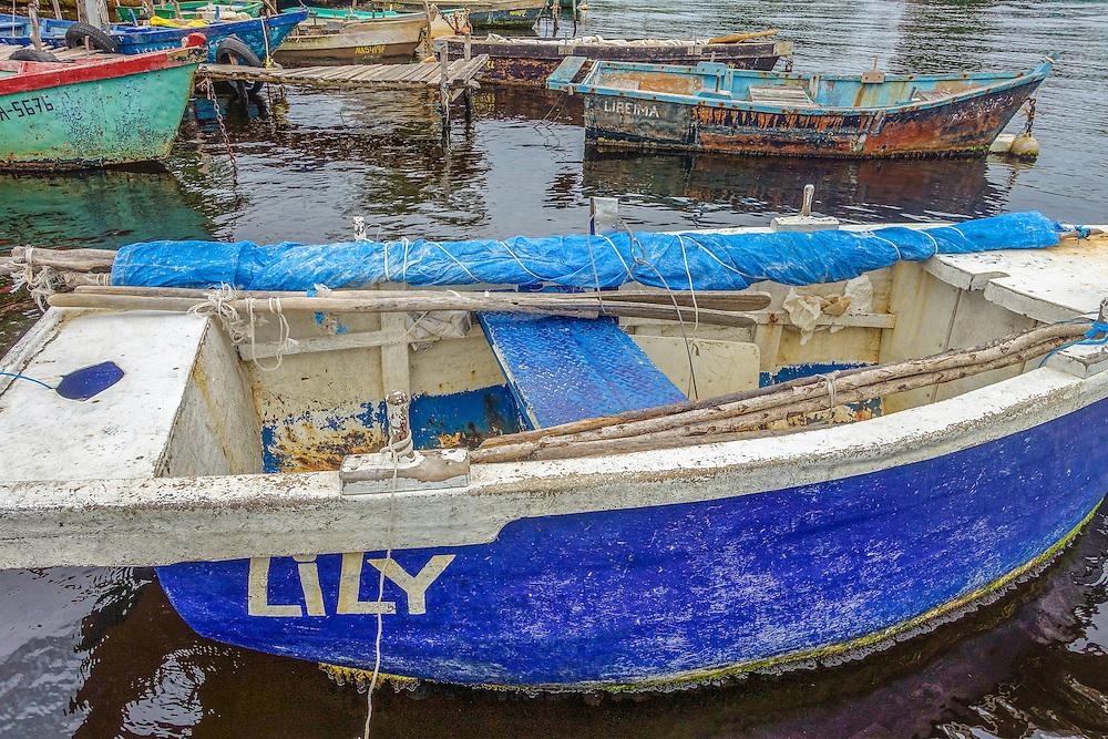 Playa Larga, Matanzas, Cuba.