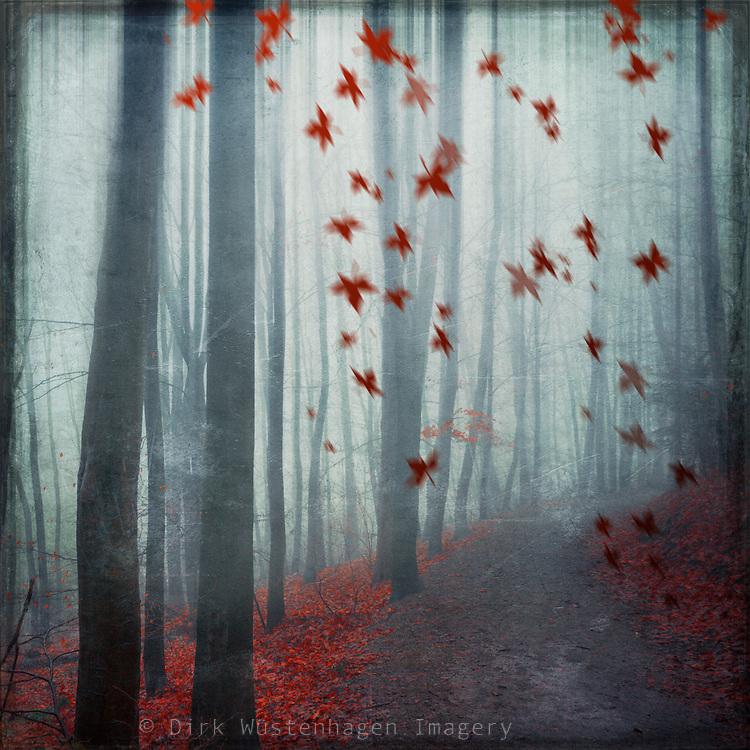 Moody autumn day famatsy.