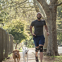 Ian  Brooks runs with his rescue dogs on Cedar Street in Calistoga