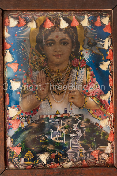 Beautifully franmed vinatge print of Lord Murugan. .Shrine in the Kali Amman Kovil by the main road leading to Haputale..Wiharagala Estate.
