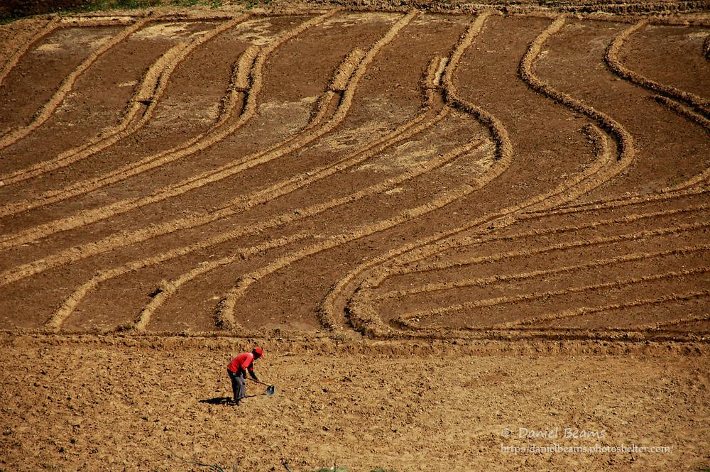 Plowed fields in Santa Cruz, Bolivia