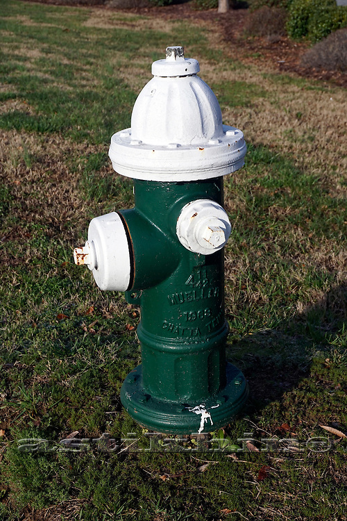 Hydrant green and white.