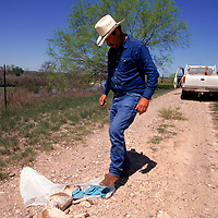 Bud Natus discovers a dead puppy carefully placed in the middle of a ranch road that parallels the Rio Grande in Eagle Pass, Texas. Natus believes it to be a warning from the Mexican smugglers after he was seen taking pictures of them.