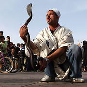 A snake charmer performs for the public in Marrakesh's Djemaa el Fna, one of the busiest squares in Africa and the world. The square bustles with acrobats, story-tellers, water sellers, dancers and musicians. By night food stalls open in the square turning it into a huge busy open-air restaurant.