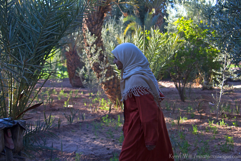 Africa, Morocco, Skoura. Profile of Moroccan woman near Skoura.