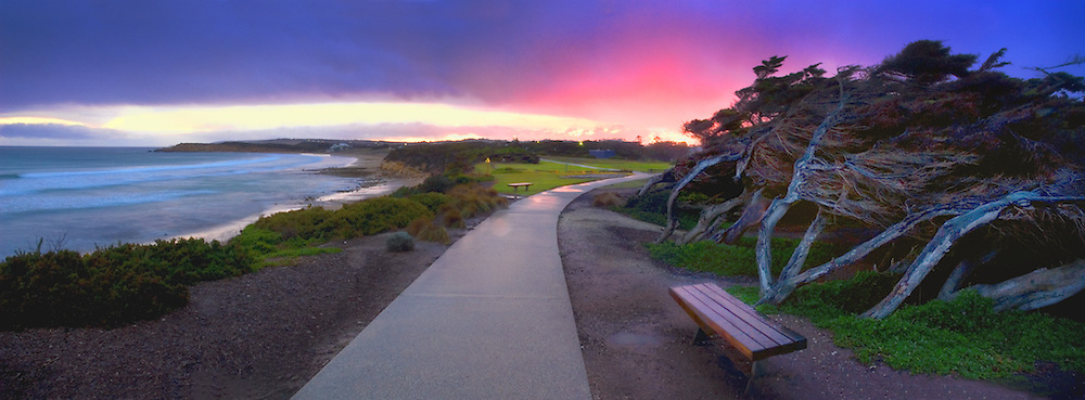 ... in wind battered cypress pines and a stunning purple sunset after rain After The Sunset