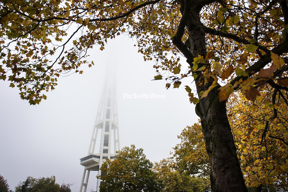 The Space Needle disappears into a thick morning fog in Seattle as seen from Broad St. on Saturday, Oct. 19, 2013. (Lindsey Wasson / The Seattle Times)