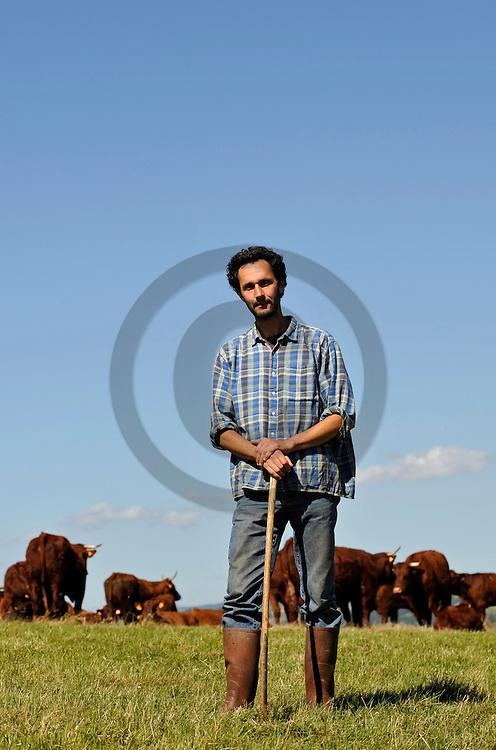 23/07/08 - MAURS - CANTAL - FRANCE - Pierre COUDERT, eleveur bio de vaches allaitantes Salers - Photo Jerome CHABANNE