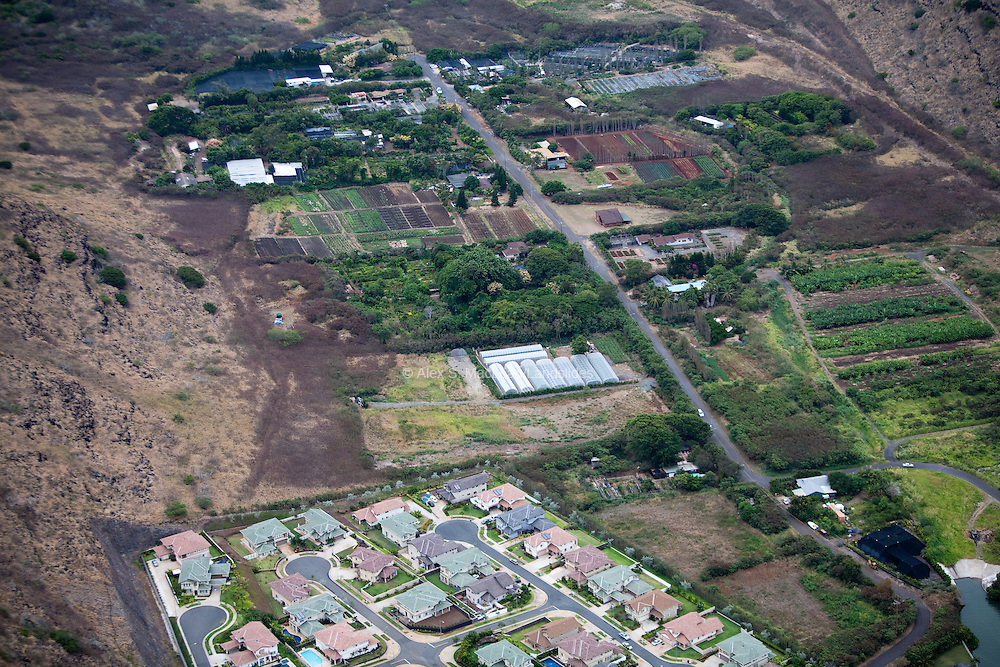 Small plant nurseries and greenhouses in Hawaii.