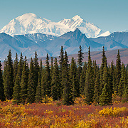 Mt. Denali, also known as Mt. McKinley, seen from the Parks Highway in Central Alaska.