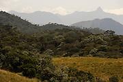 Adams peak seen from Horton Plains.