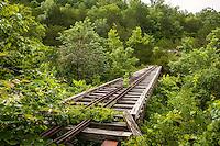 Dogpatch USA abandoned theme park near Harrison Arkansas.