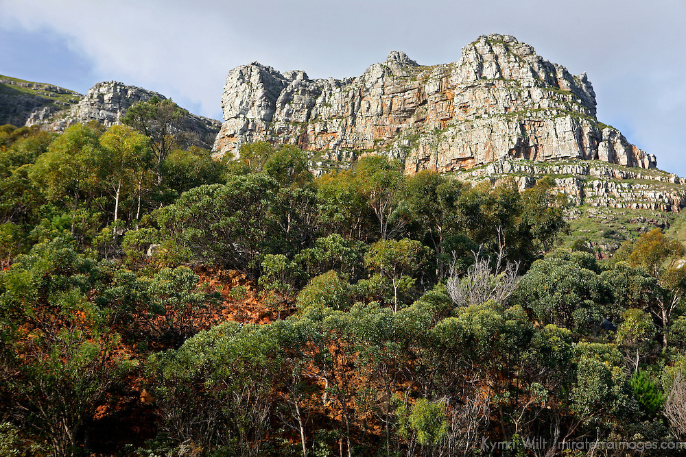 Africa, South Africa. Rugged Landscape of South Africa along Garden Route.