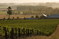 Benton-Lane Winery, Southern Willamette Valley, Oregon