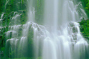 Proxy Falls, Willamette National Forest, Oregon