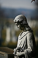 A angel sadly contemplates eternity at the Congressional Cemetery.