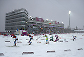 Biathlon 15km Mass Start, Mens