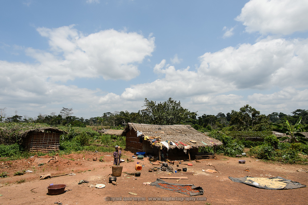 A typical homestead in the remote village of Mona in western Cote d'Ivoire. Isolation is one of the challenges to be overcome in the eradication of Maternal and Newborn Tetanus (MNT).