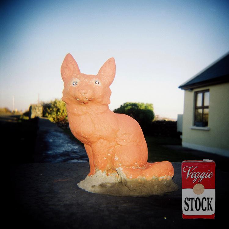 Concrete animals, Co. Clare, Ireland, Feb. 2010.