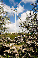Wind farm in Sico ridge