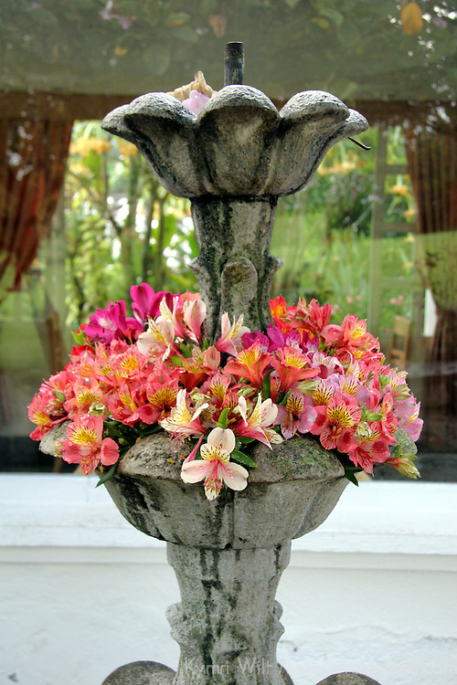 South America, Ecuador, Cotacachi. Flower Fountain at La Mirage Hotel Resort & Spa in Ecuador
