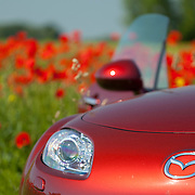 Mazda MX-5 sportster red car in Kazimierz Dolny town and on field of poppies in Poland