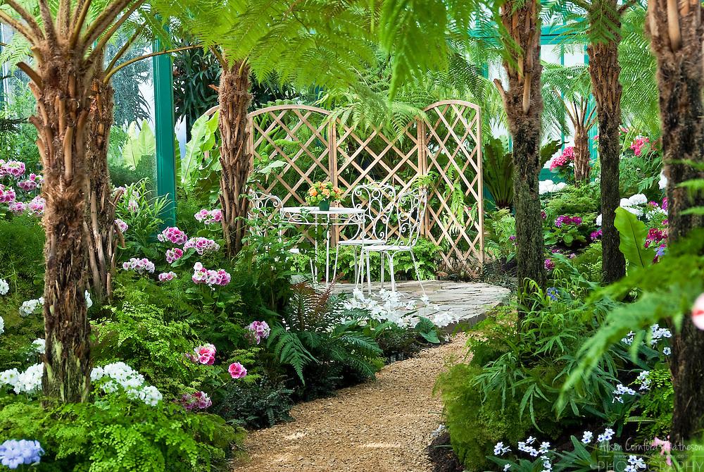 Inside The Belgian Royal Greenhouse Alison Cornford Matheson