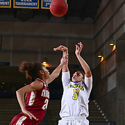 Delaware Guard ERIKA BROWN (3) takes a jump shot at the end of the of the first half  of a Colonial Athletic Association regular season basketball game between Delaware and College of Charleston Sunday, Jan. 22, 2017 at The Bob Carpenter Sports Convocation Center in Newark, DEL