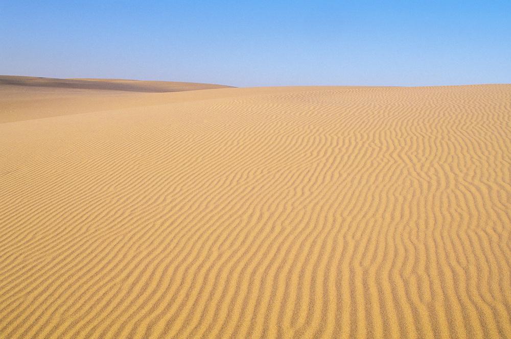 Ripples in sand at Umpqua Dunes; Oregon Dunes National Recreation Area, .Oregon coast.
