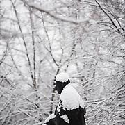 Snow falls on campus. (Photo by Gonzaga University)