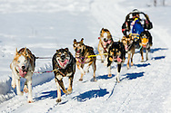 Musher John Hanson Jr. competing in the Fur Rendezvous World Sled Dog Championships at Campbell Airstrip in Anchorage in Southcentral Alaska. Winter. Afternoon.