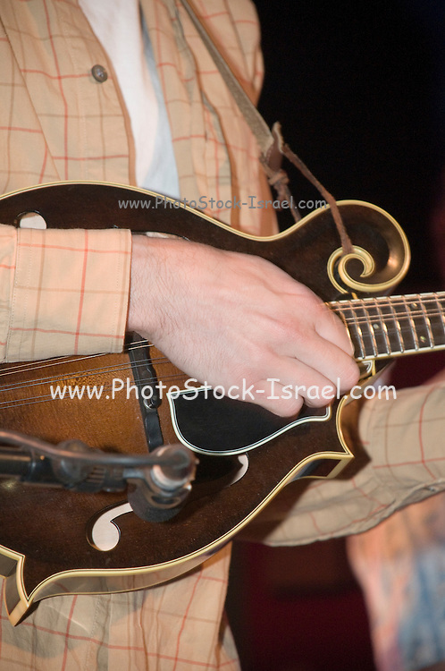 Close up of hands playing a mandolin