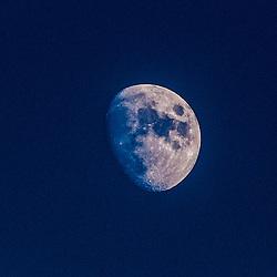 Moon at The Falkirk Stadium