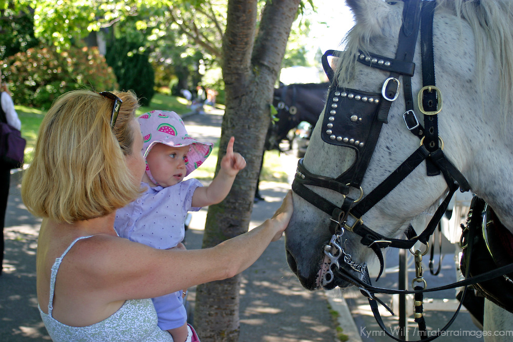Canada, British Columbia, Victoria. A mother introduces her child to a horse in Victoria, BC.