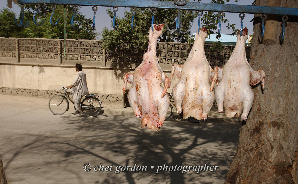 Fresh chickens hang from a rack outside a neighborhood store in Kabul, Afghanistan on Sunday, May 26, 2002.